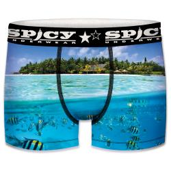 Boxer Spicy motif Aquatique