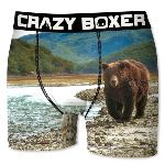 Boxer Homme CRAZYBOXER nature ours