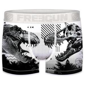 Boxer Fantaisie Freegun Dino vs skull