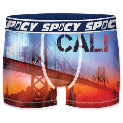 Boxer Spicy motif California